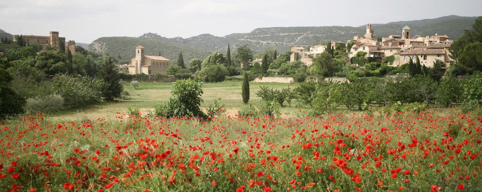 Top 5 des plus beaux villages de Provence