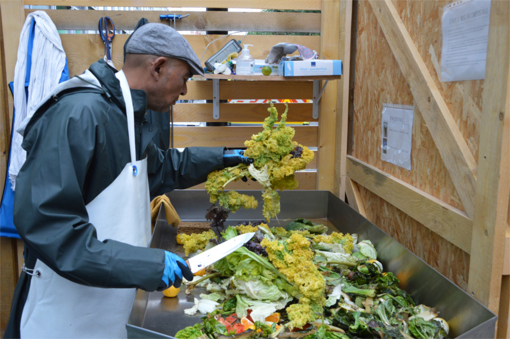 légumes-compost