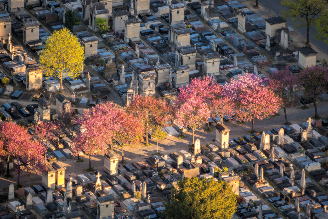 cimetière-montparnasse