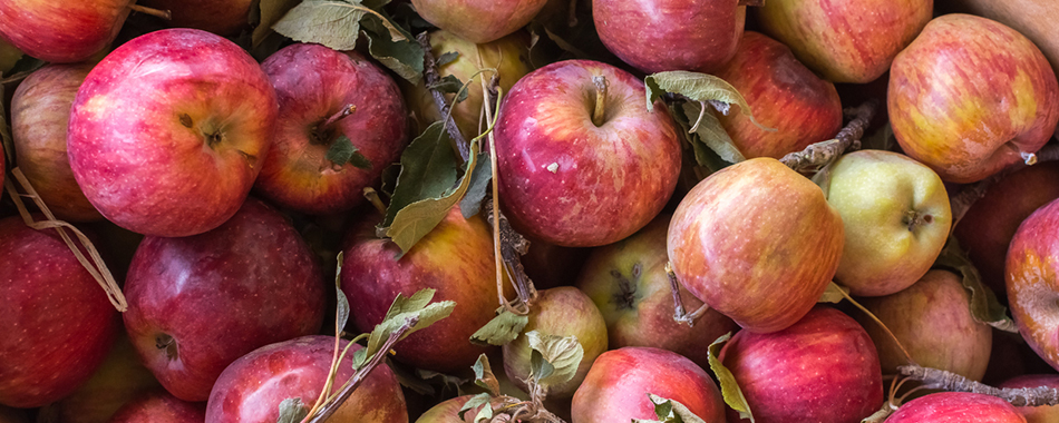 infographie les fruits et l gumes les plus contamin s par les pesticides le bonbon healthy. Black Bedroom Furniture Sets. Home Design Ideas