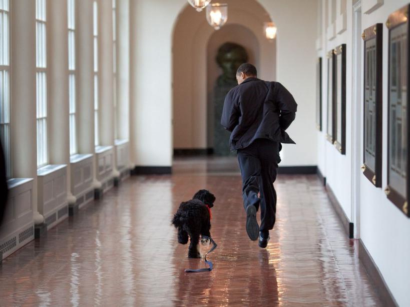 Avec Bo, le chien promis à ses filles (15/03/09)