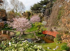 Jardin Japonais Paris Les Plus Beaux Jardins Japonais De La Capitale