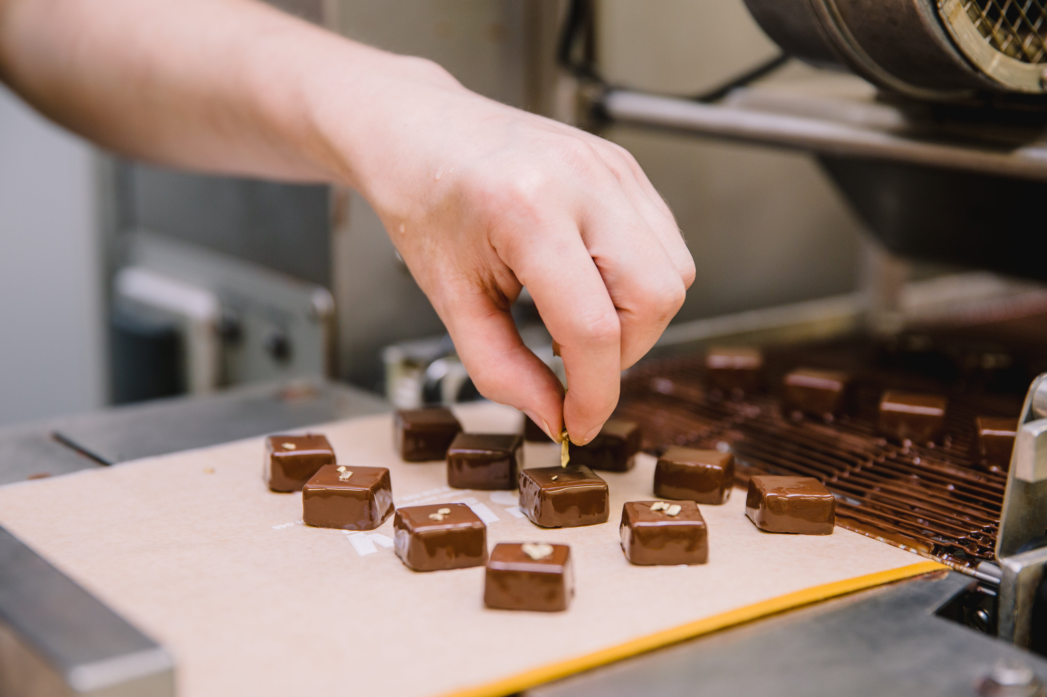 Janie chocolaterie artisanale albi