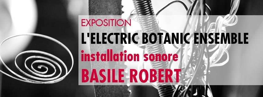 vernissage exposition  electric botanic ensemble
