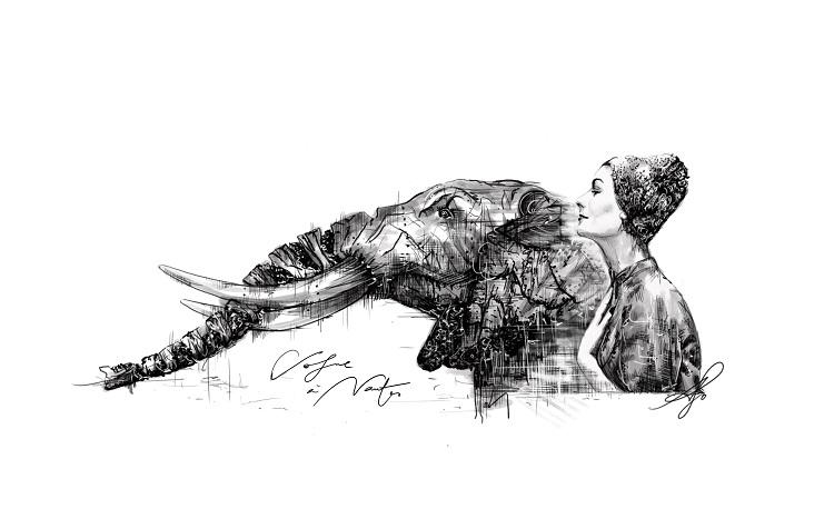 illustration elephant nantes