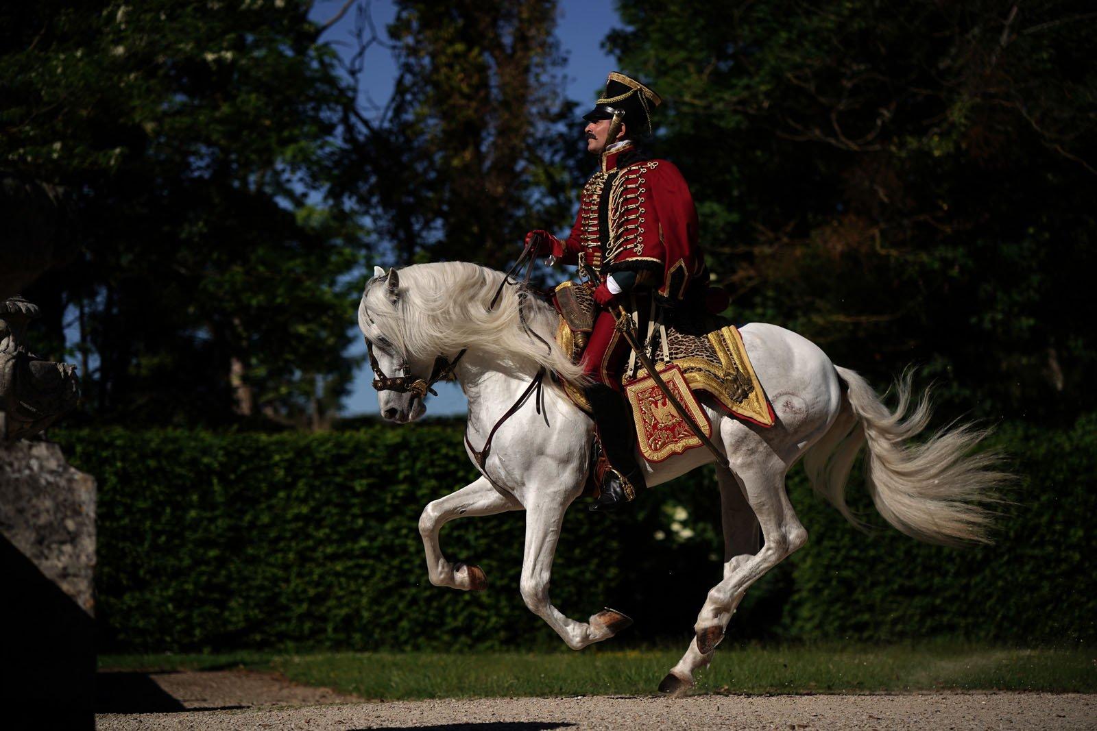 Le retour du h ros dujardin revient parmi les siens for Dujardin retour du heros