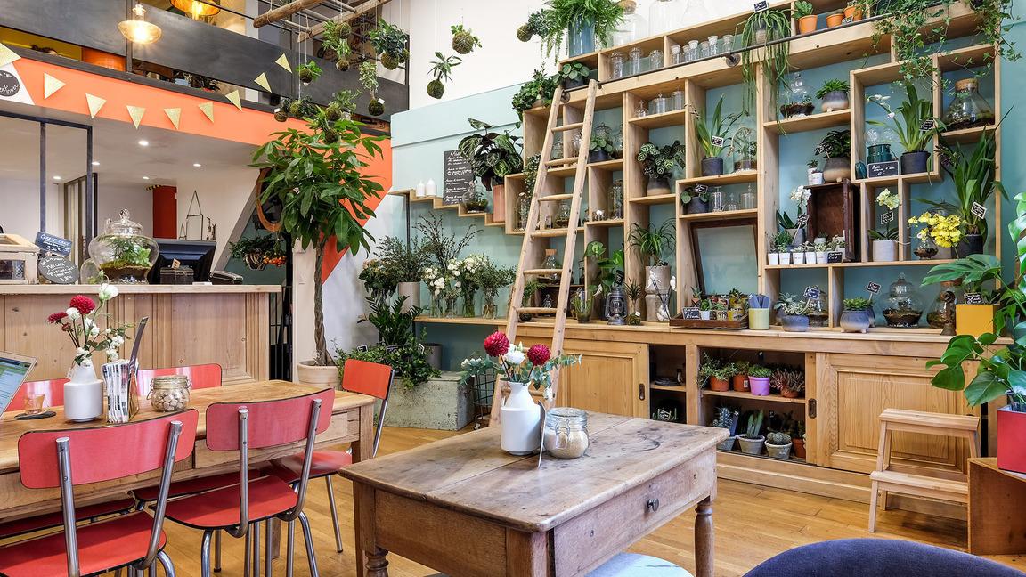 Top des jardineries urbaines où dénicher des plantes canons à Lyon
