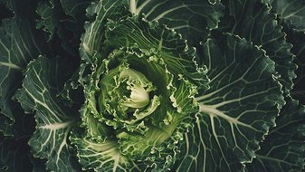 Comment manger bio sans se ruiner?