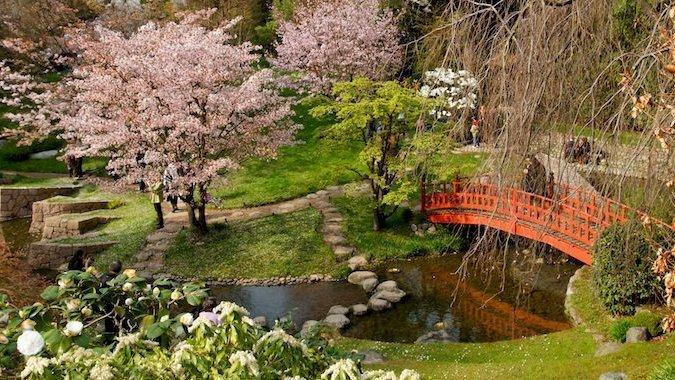 jardin japonais nantes chien jardin de lile de versailles nantes rdvludique parcs jardins et. Black Bedroom Furniture Sets. Home Design Ideas