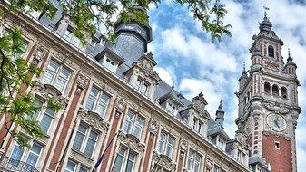 Les dix villes les plus veggie friendly de France