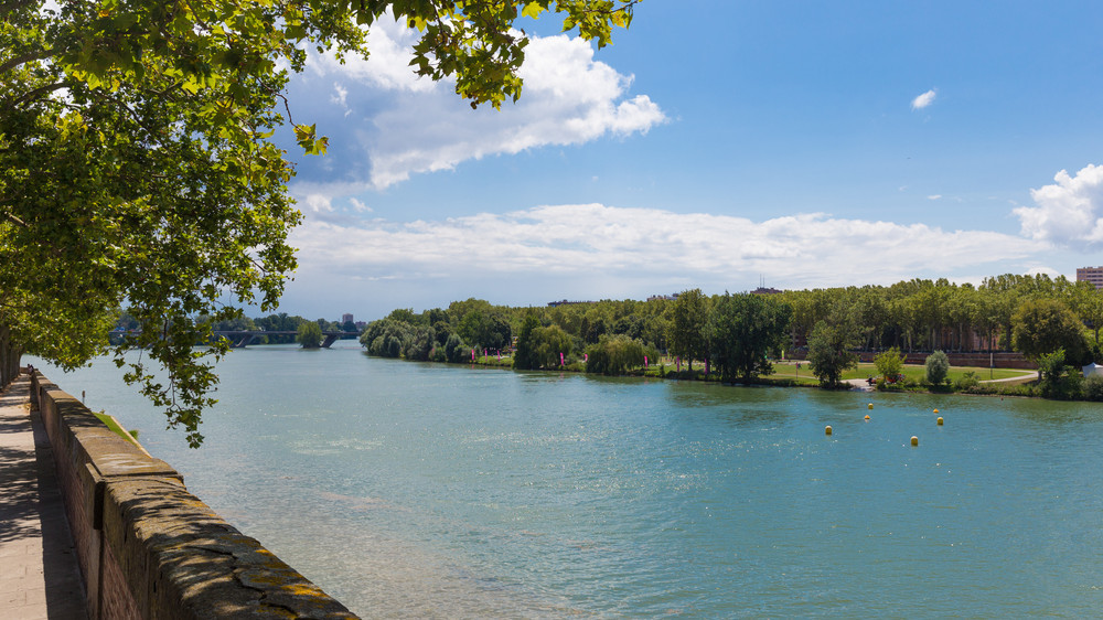 Un grand nettoyage citoyen de la Garonne va avoir lieu à Toulouse
