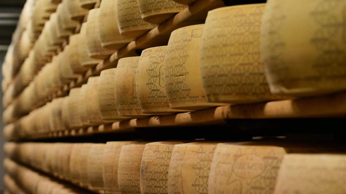 Le tour du monde en 9 fromages
