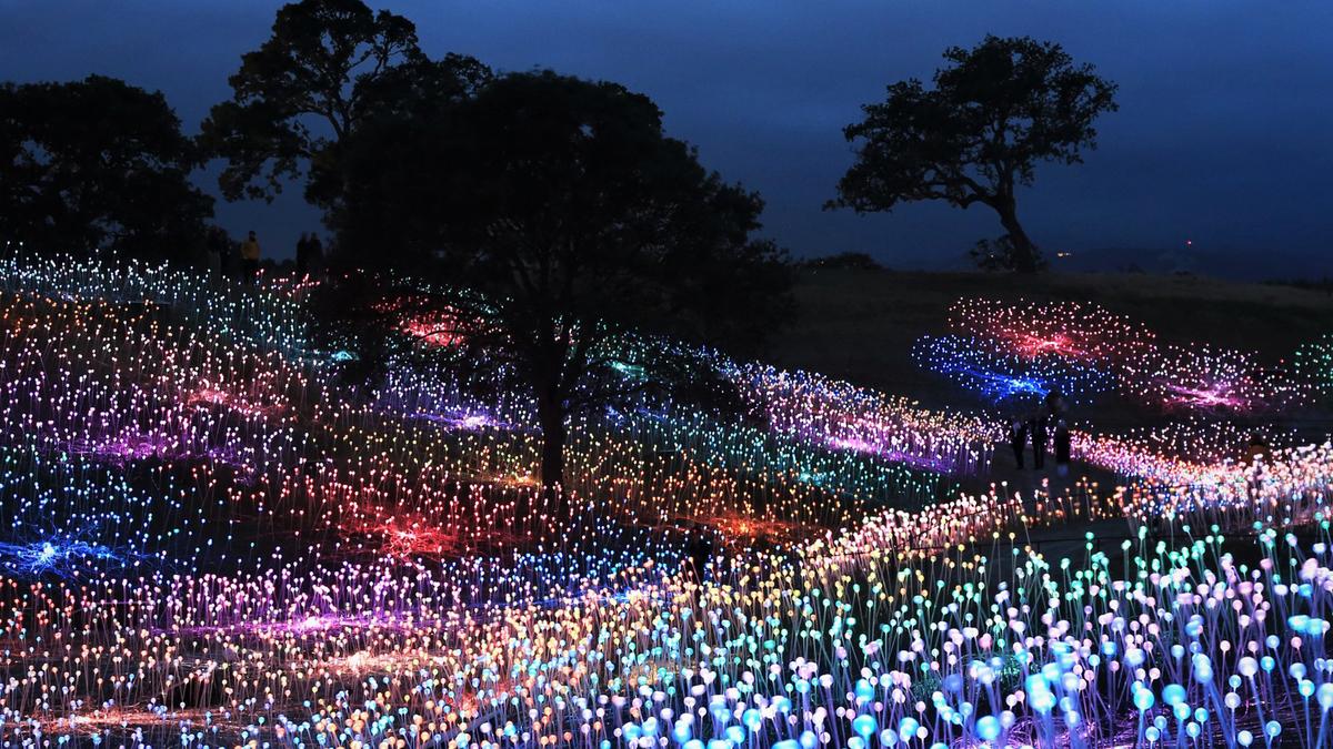 Des fantastiques installations lumineuses dans le monde entier