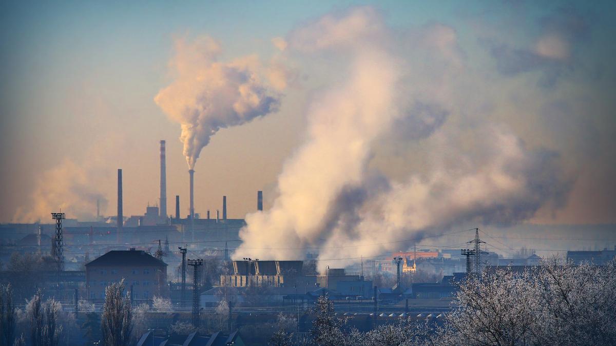 5 actions inattendues pour réduire le réchauffement climatique