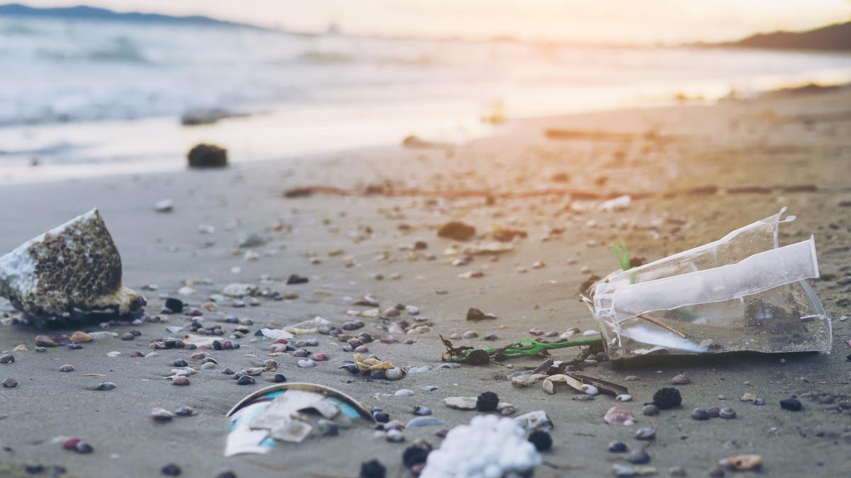 A 70 ans, une mamie nettoie 52 plages de la côte britannique