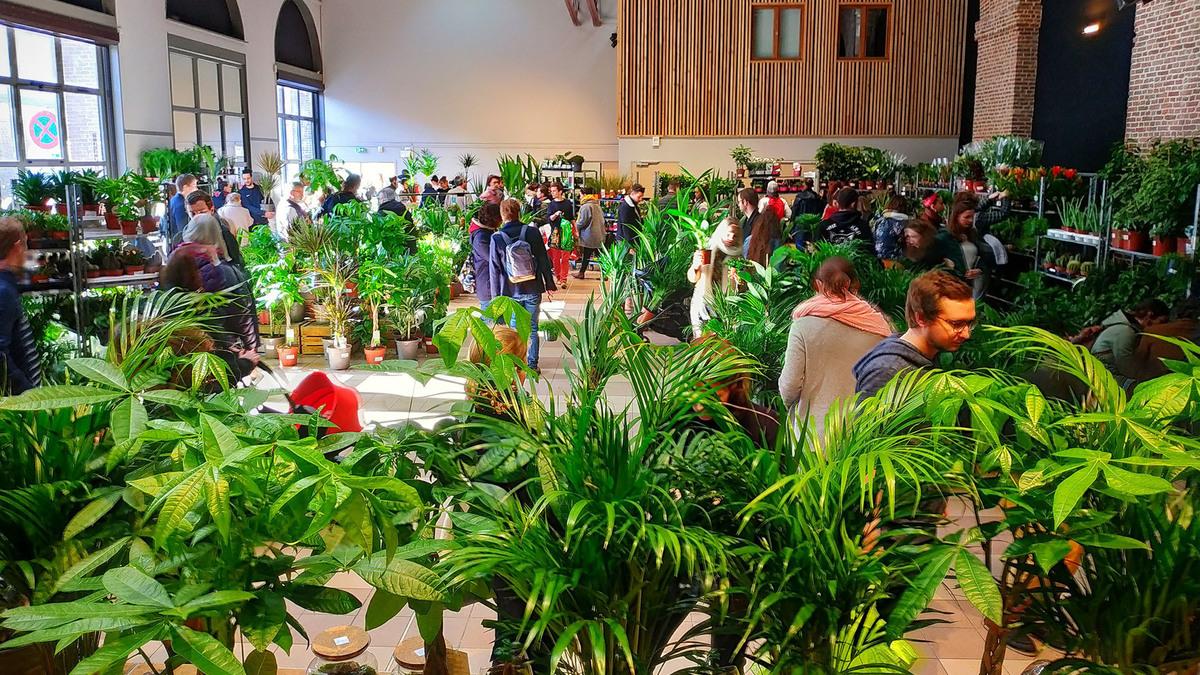 vente de plantes Nantes gout des plantes