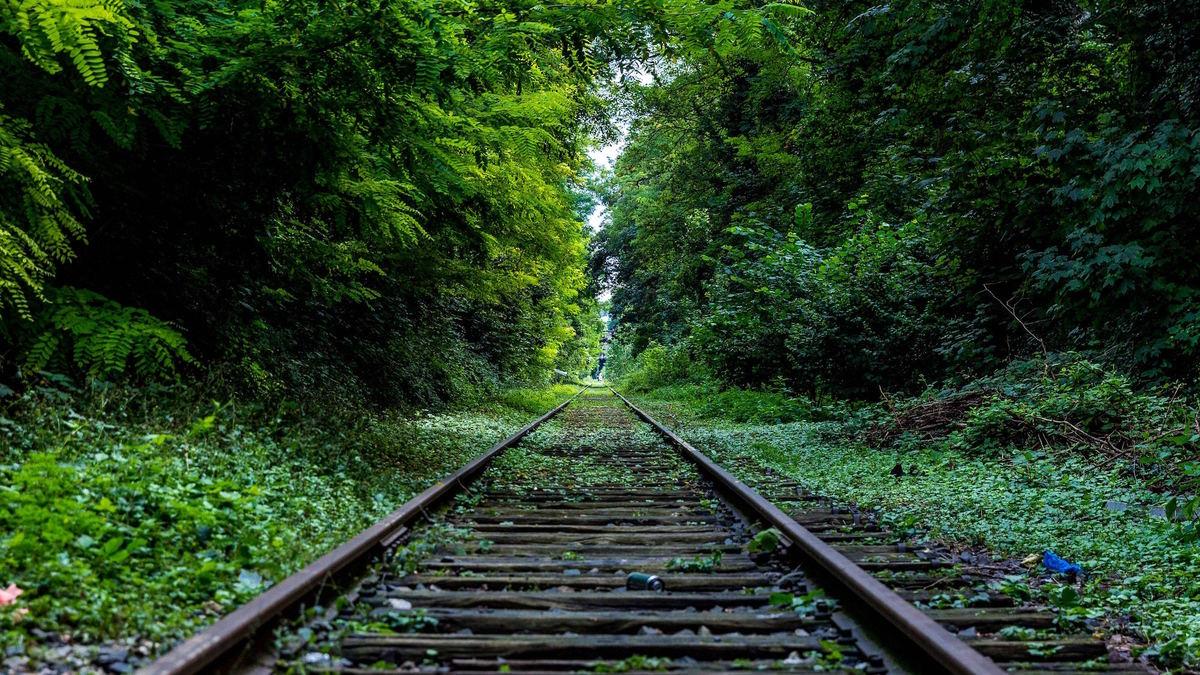 Un train secret parisien vous dépose en pleine forêt