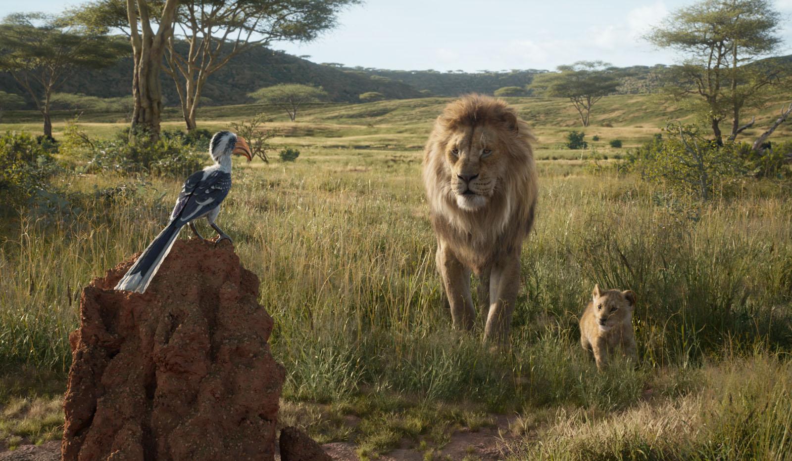 Le Roi Lion film critique
