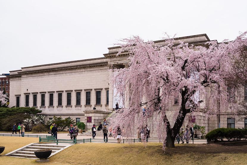 National Museum of Modern and Contemporary Art de Séoul