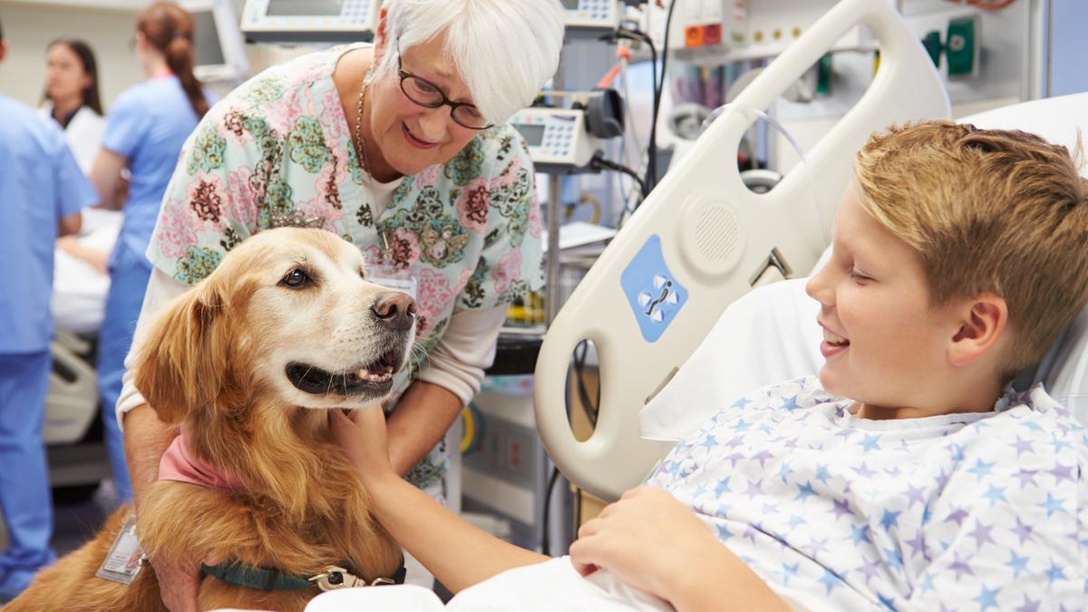 Un hôpital de Lyon va proposer la thérapie assistée par animal à ses patients