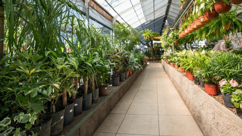 Nouvelle grande foire aux plantes à prix ronds dans Toulouse ce weekend
