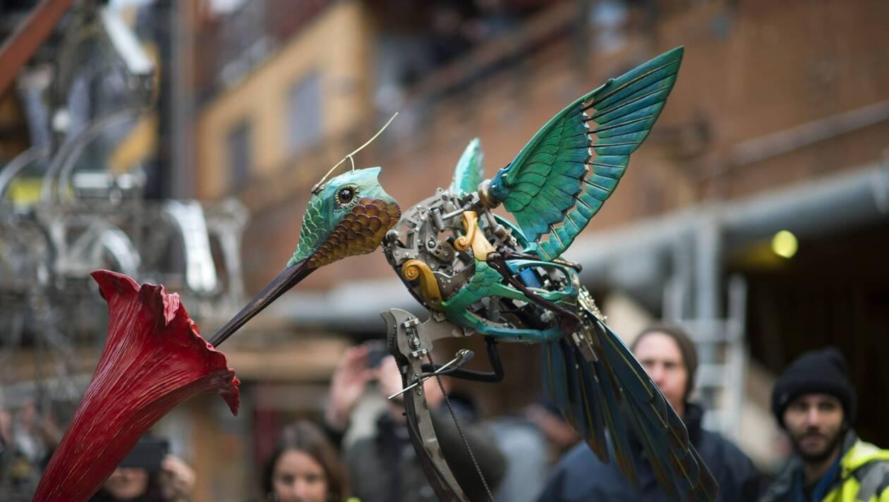 colibri machines de l'ile nantes