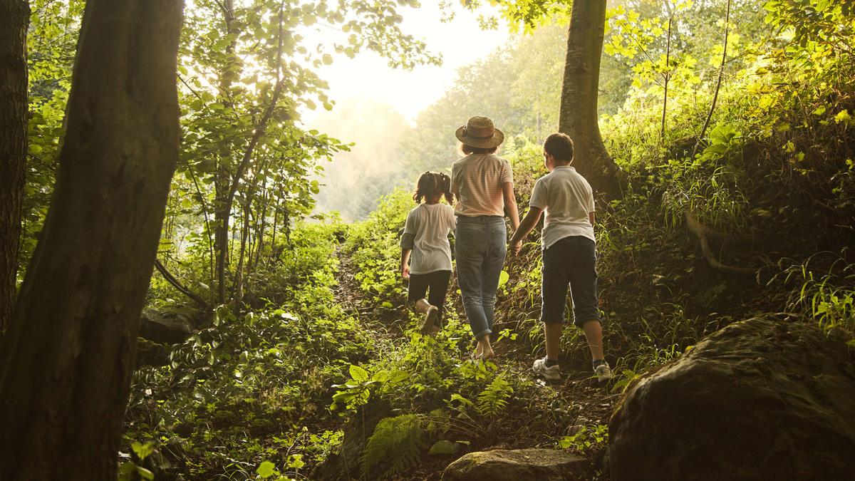 Randonnée à Nantes, les 4 plus beaux itinéraires pour poursuivre ses vacances