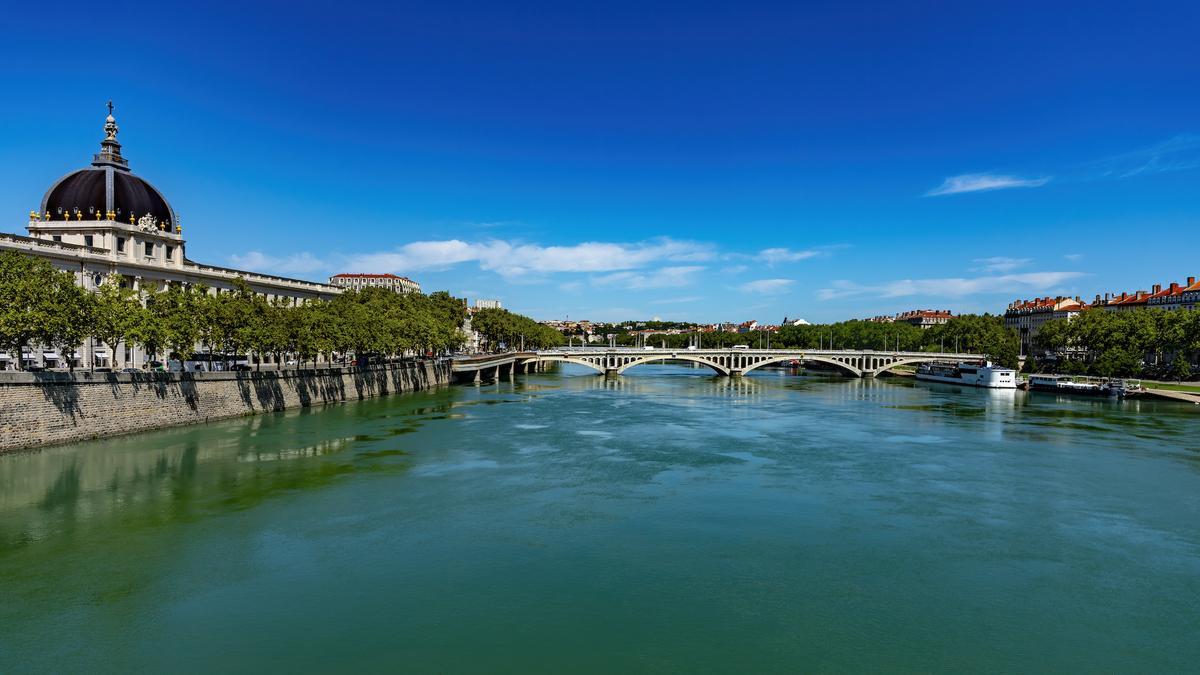 Lyon : trois dauphins aperçus dans le Rhône ce jeudi matin !