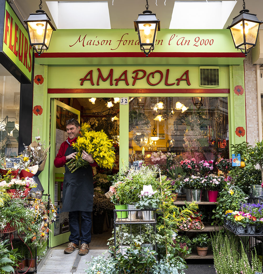 amapola fleuriste paris devanture
