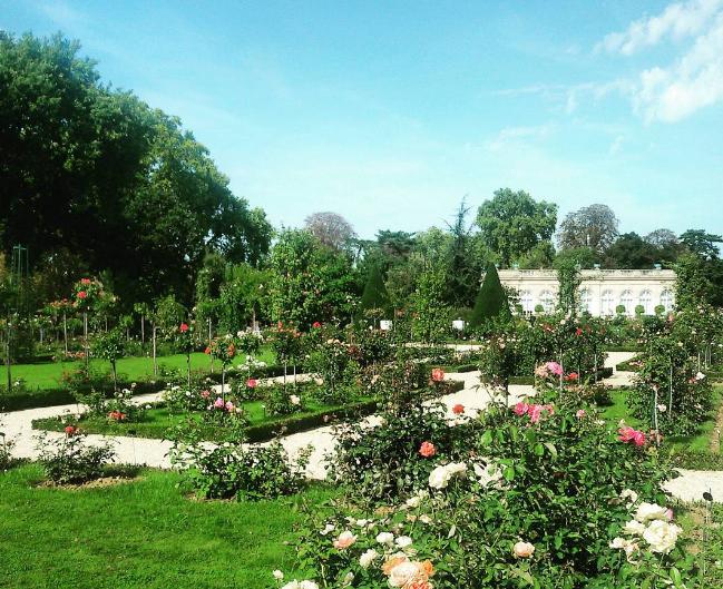 10 spots pour bronzer tranquille for Jardin bagatelle