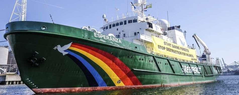 greenpeace_950.jpeg