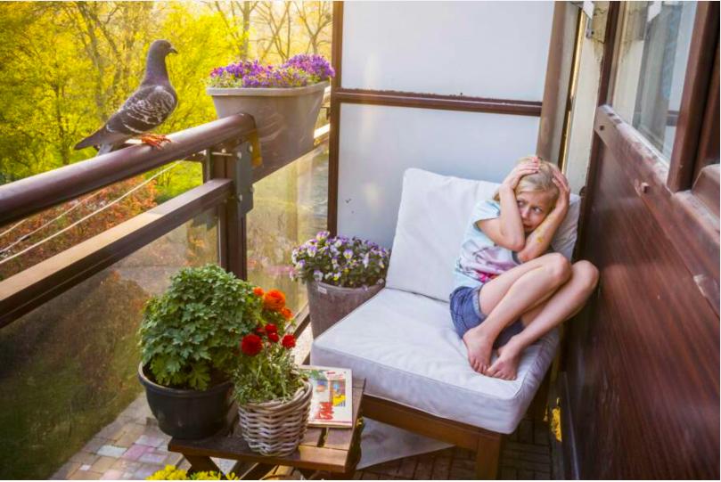©️ Jasper Doest, Pandemic Pigeons- A love story, 2020