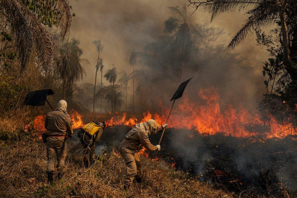 ©️ Lalo De Almeida, Pantanal Ablaze, 2020